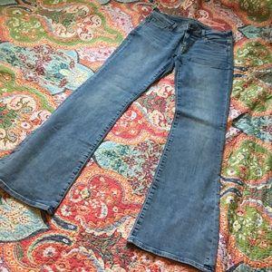 NWOT kick boot AE jeans XLONG